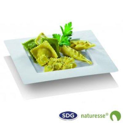 md-piatto-quadrato-dedra-in-polpa-di-cellulosa-n463